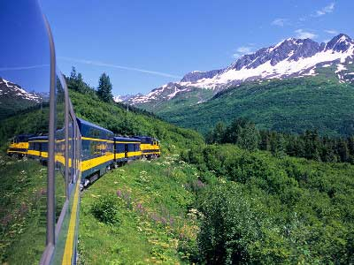 Alaska Denali Train with Icebergs & Bears