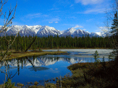 Alaska National Parks Self Drive Explorer