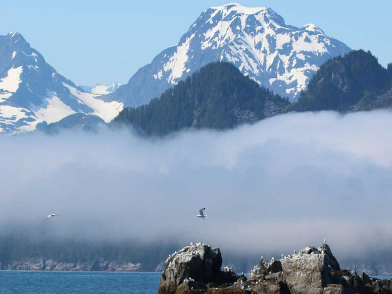 Alaska Self Drive Road Trip | Kenai Fjords National Park