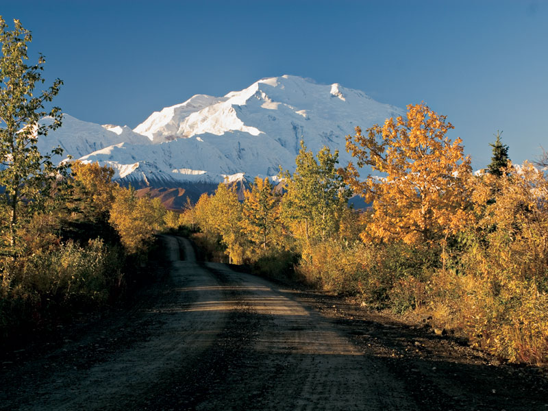 Alaska Self Drive Road Trip | Denali National Park
