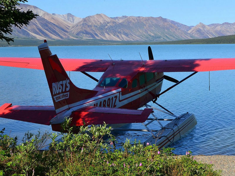Anchorage Day Trips | Chinitna Bay Bear Viewing Flight Safari