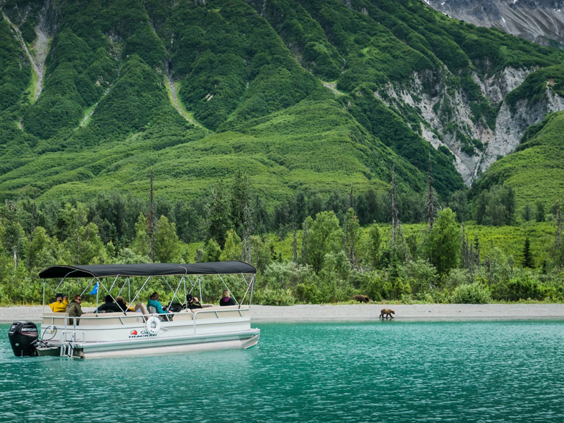 Anchorage Day Trips | Lake Clark National Park Bear Viewing