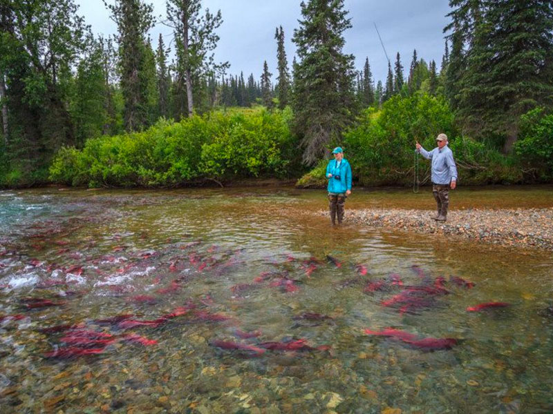 Alaska Day Excursions | Guided Fishing Adventure